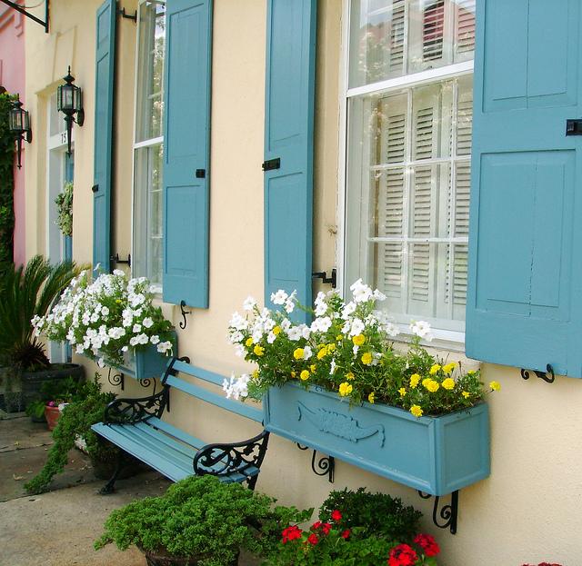 Summer Loving in Charleston