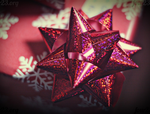 four23org-christmas-bow-macro